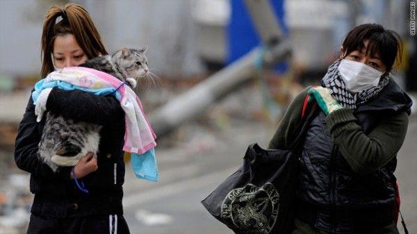 Gruppi di soccorso per animali che corrono per salvare le vittime degli animali del Giappone