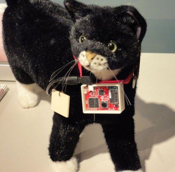 Dispositivo auto-twitter per gatti svelato da Sony