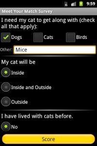 Adozione del gatto? C`è un`app per questo