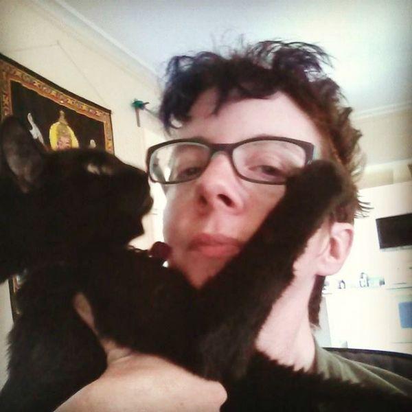 Hai mai avuto uno stupido incidente di gatto che ti ha rovinato la giornata?