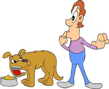 Come fermare l`aggressività del cibo per cani