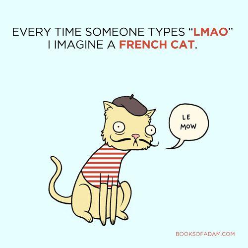 Come sarebbe un gatto mammi?