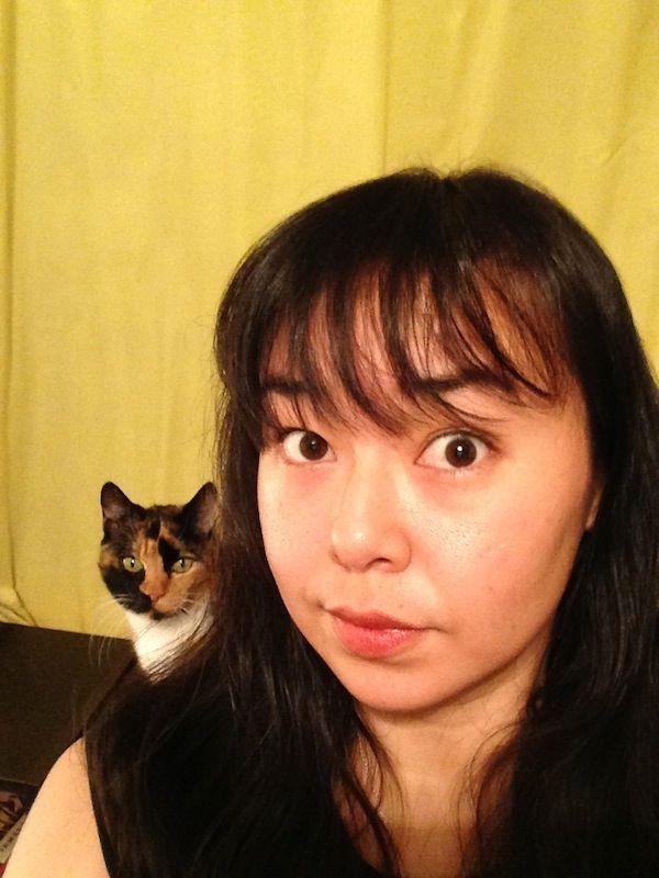 Kasha, il gatto che mangia il cadavere e gli amici: incontra i raccapriccianti gattini del Giappone