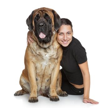 Mastiff temperament – getting to know its easy going but courageous traits