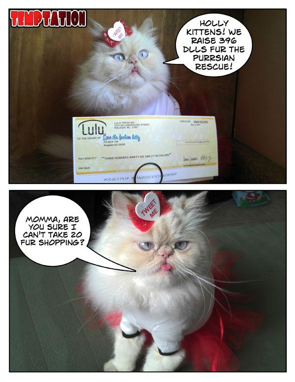 La mia sensualità sta aiutando altri gattini meno furtunati!