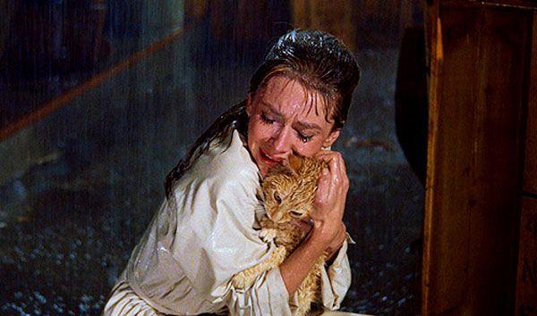 Nove momenti memorabili nella storia del cinema felino