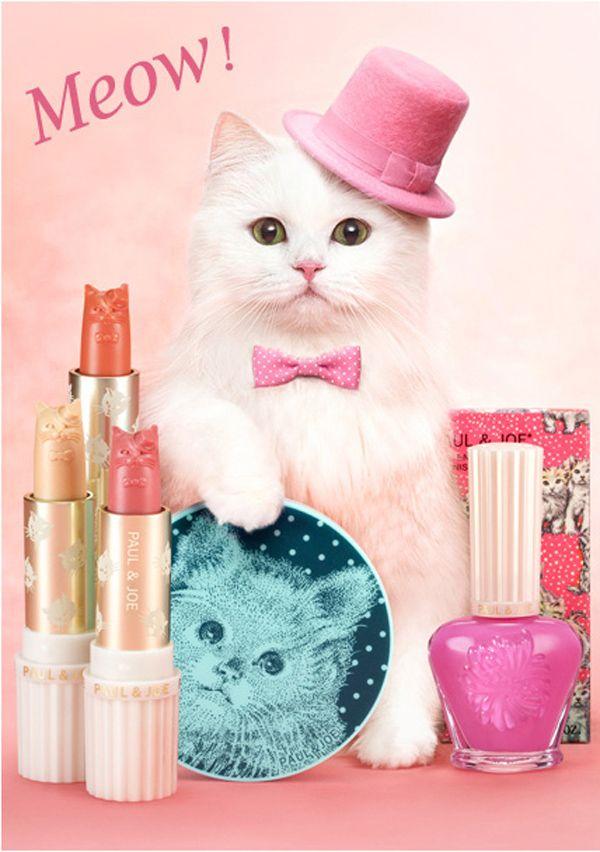 I nostri momenti preferiti nella moda per gatti per il 2012