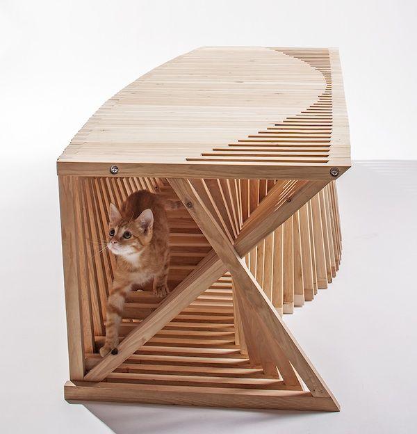 Pix ci piace: gli architetti portano i rifugi per gatti al livello successivo