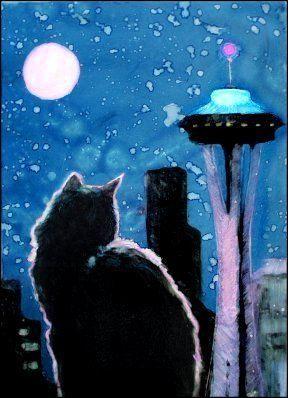 Rifugio di Seattle per regalare cibo per gatti ai bisognosi