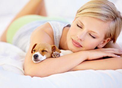 I migliori letti per cani per il tuo compagno canino