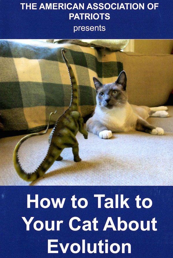 Cosa può fare il tuo gatto per gli Stati Uniti? Chiediamo all`associazione americana dei patrioti