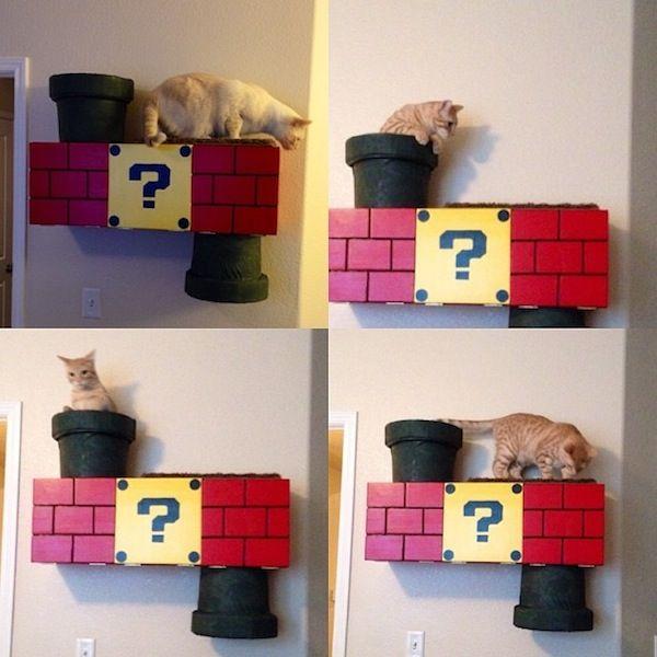 Il tuo gatto ha chiaramente bisogno di questa scatola da arrampicata super mario